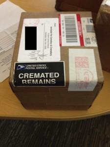 The cremated remains were mailed back to us by the 3 crematoriums.